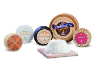 importateur de fromages italiens