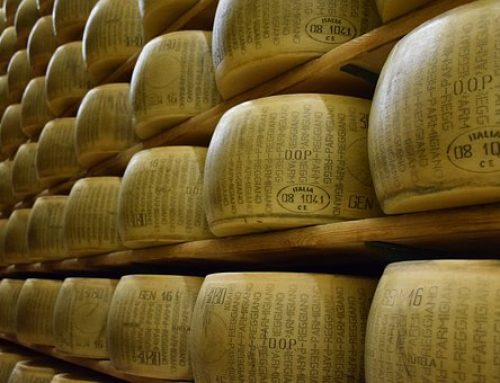 Grossiste en fromages italiens