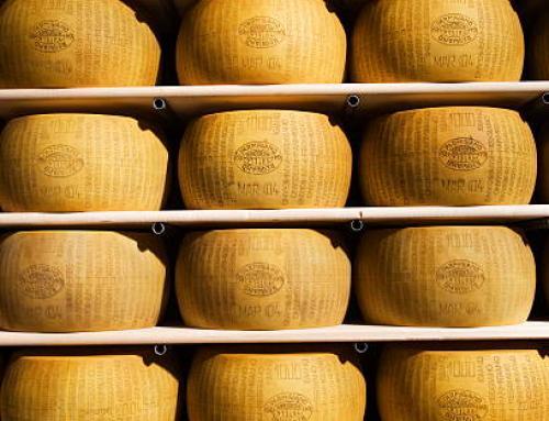 Grossiste en fromages: achat de fromages en gros