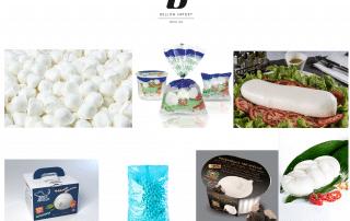 vente de mozzarella pour professionnels