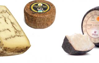 importateur et vente specialites fromageres italiennes